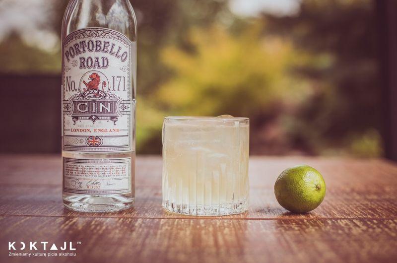Agava Fizz - prosty drink z ginem i syropem z agawy