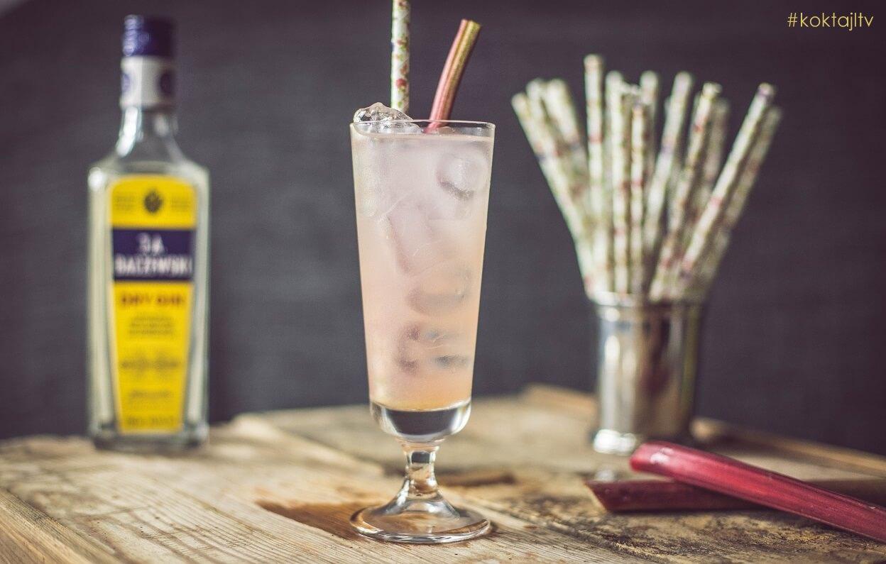Rabarbarowy Tom Collins - najpopularniejszy drink z ginem.