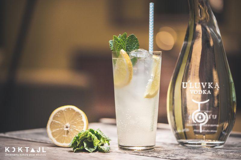 Vodka & Tonic - klasyczna wódka z tonikiem w nowej odsłonie